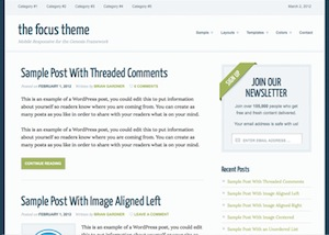 image of the focus theme for WordPress