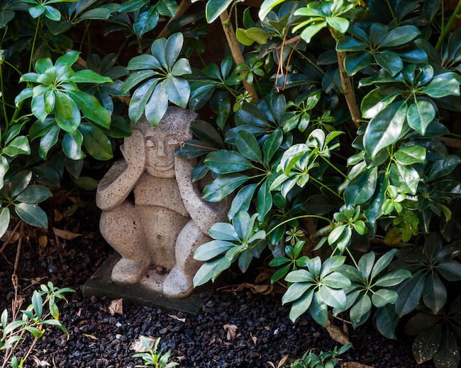 Another well-hidden Menehune statue on the grounds of Disney's Aulani resort in Ko Olina, Hawaii.